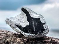 GeoOstsee: Das Kliff von Travemünde - Geologische Exkursionen für Gruppen