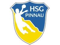 HSG Pinnau Cup 2017