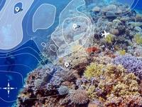 Mitgereist - Lebenselixier Wasser - Biodiversität und Gefährdung tropischer Korallenriffe