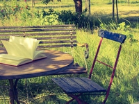 Lesungen im Park