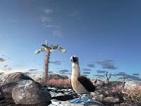 Rätsel des Lebens - Darwins große Reise (in 3D)