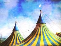Zirkus Frank